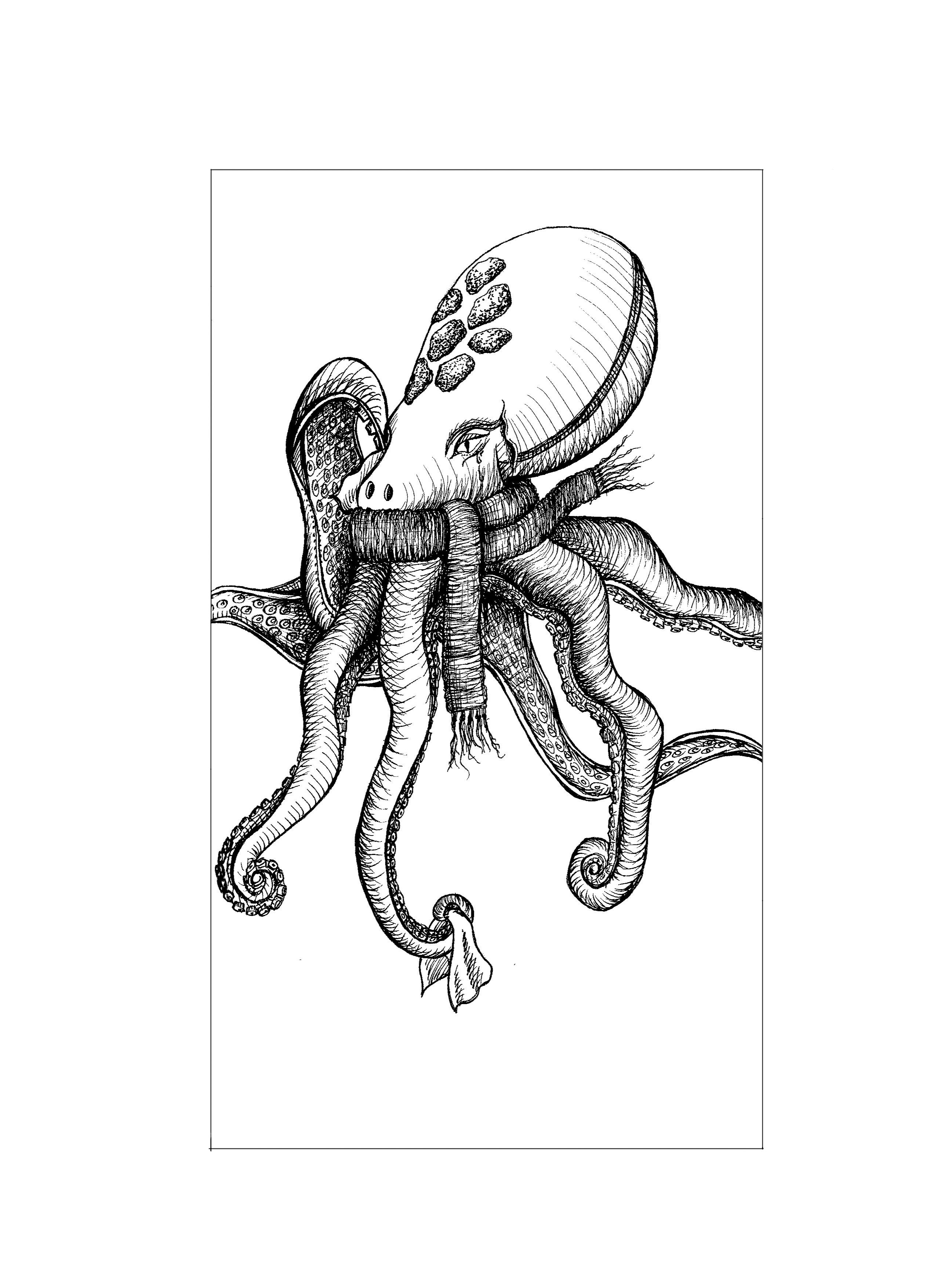 Octopus with acold