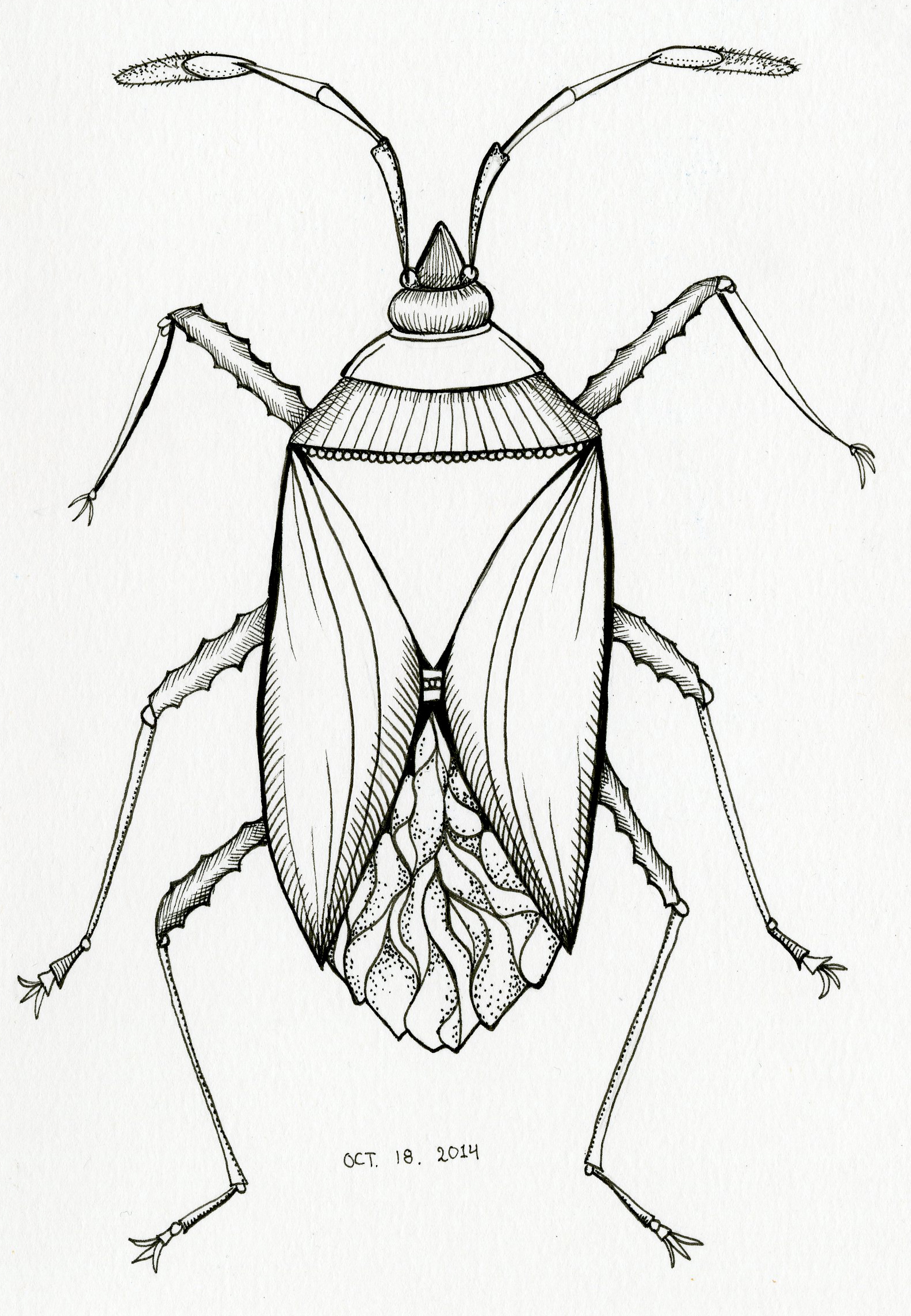 Inktober 18 –Insect!
