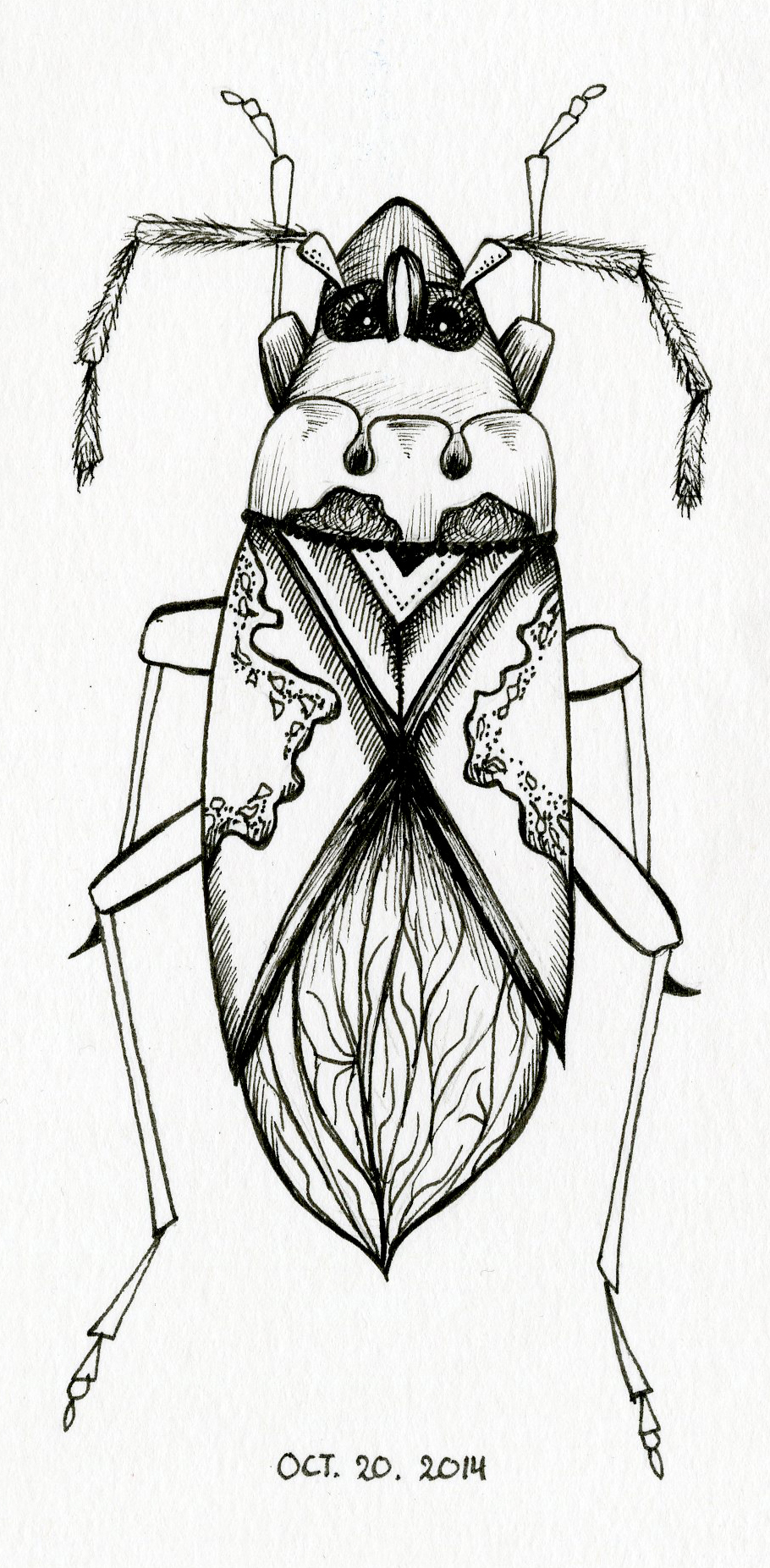 Inktober 20th – Insect #3