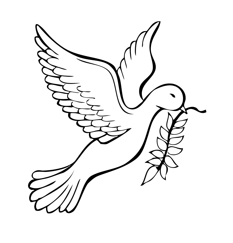 Vector Dove!